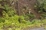 Dopravní nehoda osobního auta na silnici Odry - Spálov. Těsně před vozidlo spadl vlivem větru a podmočené půdy strom a řidička již nestačila zastavit a narazila do něj. Nehoda se obešla bez zranění.