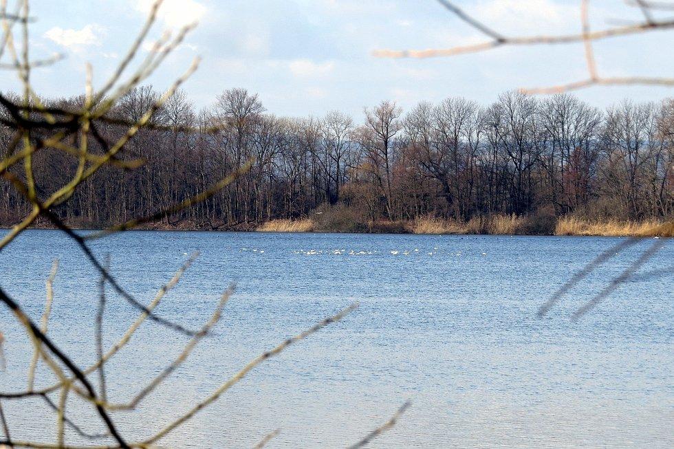 Na Bartošovickém dolním rybníku se koná vždy na přelomu října a listopadu slavnostní výlov.