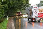 U Mankovic spadl ve středu 14. října ráno strom přes silnici.