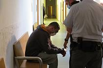 Dvouletý nepodmíněný trest ve vězení s ostrahou uložil Okresní soud v Novém Jičíně muži, který jako recidivista ukradl v době vyhlášeného nouzového stavu vibrátor. Trest ještě nenabyl právní moci.