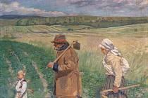 Cyril Mandel, Do řepy, olej, plátno.