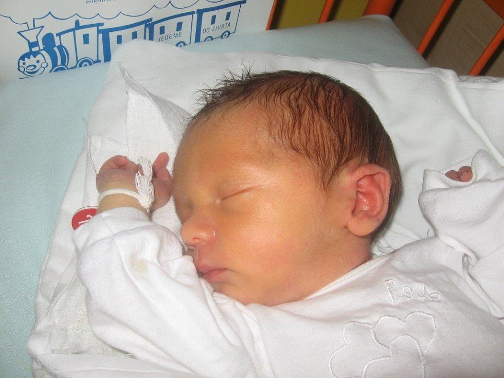 David Něnička, 13. 11. 2012, Šardice, 48 cm, 2,65 kg