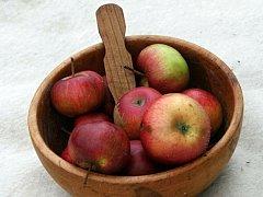 Ovocnářství našich předků plně spočívalo na domácích odrůdách, kterých se jen u jabloní odhaduje na šest tisíc.