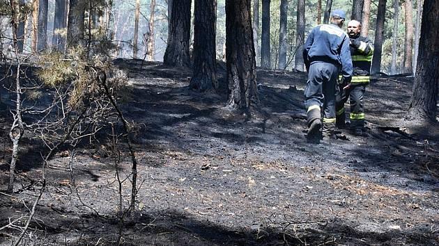 Požár lesa u Bzence na Kyjovsku - ilustrační foto.
