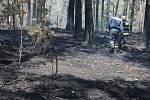 Po požáru zůstanou hektary spálené země.