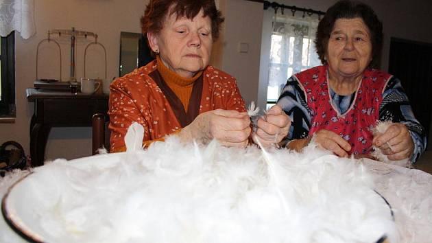 Ženy z Vacenovic se přes zimu vždy schází ve vacenovickém muzeu, kde derou peří.
