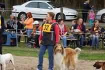 Letošní, desátý, ročník Happy Dog Day měl ve Bzenci rekordní účast.