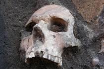 Na kostry narazili stavební dělníci. Upozornili archeology.
