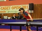 Těsná prohra hodonínských stolních tenistek proti mistryním z Francie .