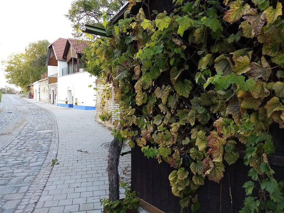 Nejstarší lokalita vinných sklepů ve Vracově. Už na konci 18. století tady bylo evidovaných devět sklepů.
