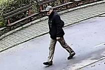 Kamera zachytila muže u základní školy v Dolních Bojanovicích, odkud zmizelo horské kolo.