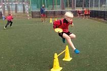 Pětačtyřicet dětí z Hodonína, Dubňan, Ratíškovic, Lužic, Mutěnic, Rohatce a Hrušek se zúčastnilo sportovního kempu, který ve dvou prázdninových termínech uspořádal klub FK Hodonín.