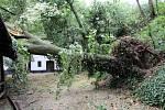 Následky úterní bouřky v Petrově.
