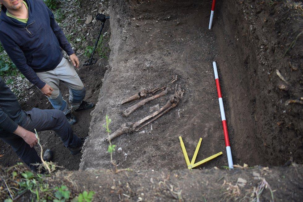 Archeologové objevili v hrobě u říčky Radějovky ostatky šesti lidí.