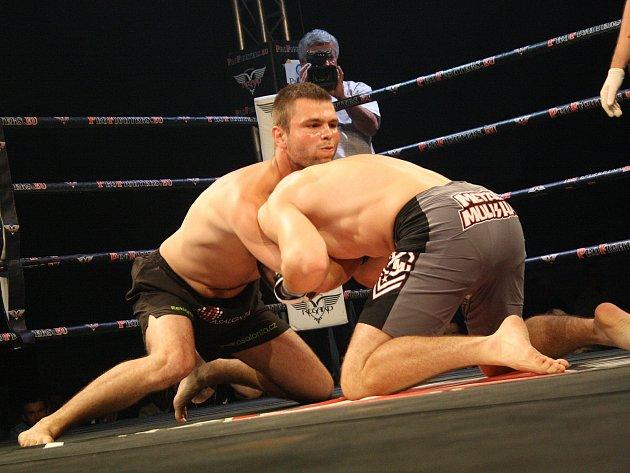 Na hodonínském zimním stadionu TEZA se v sobotu večer uskutečnila další Noc Bojovníků 2014. Téměř dvě tisícovky diváků viděly patnáct zápasů v klasickém boxu, MMA, Muay Thai a K1.