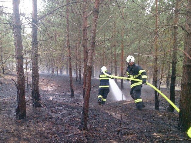 Dva lesní požáry zaměstnaly ve čtvrtek hasiče na Hodonínsku.