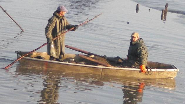 Výlov Jarohněvického rybníku v Dubňanech.
