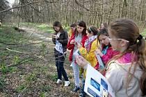 Dubňanští žáci při pozorování pupenů.