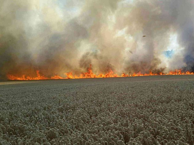 Požár u Radějova zničil pole obilí na ploše 15 hektarů.
