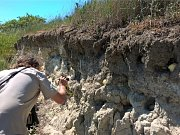 Někdo montážní pěnou zacpal desítky hnízdících nor vlhy pestré. Tento pestře zbarvený pták patří mezi silně ohrožené druhy.