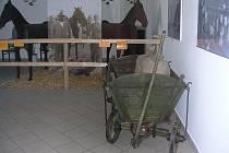 Výstava zavede návštěvníky na starý trh v Hodoníně.