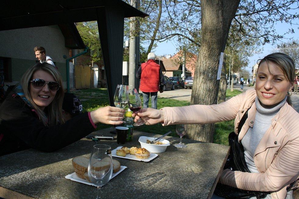 Milovníci vína z celé České republiky dorazili na otevřené sklepy na Podluží.