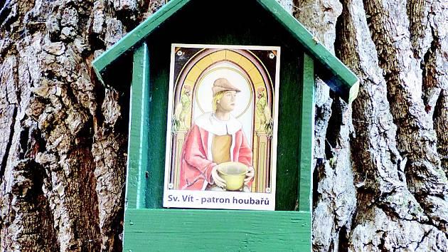 U Budkové cesty poblíž Ratíškovic na Hodonínsku připevnili nadšenci na dub budku s obrázkem svatého Víta, patrona časného vstávání.