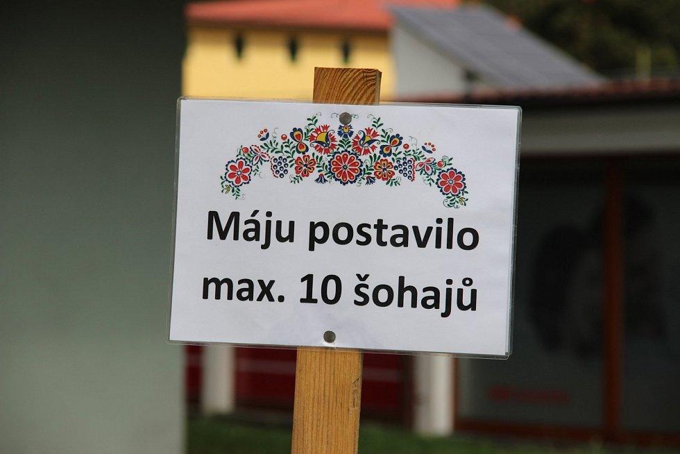 Na velkou máj letos museli Kyjovští zapomenout, tak postavili menší na pahorku
