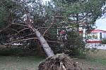 Vichřice Emma na Hodonínsku