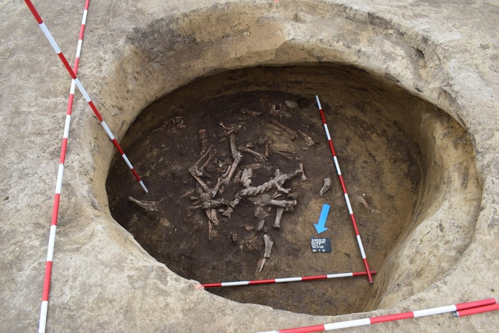 Nálezy ze záchranného archeologického výzkumu v Žarošicích.