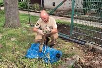 Nalezená munice u Kyjova.