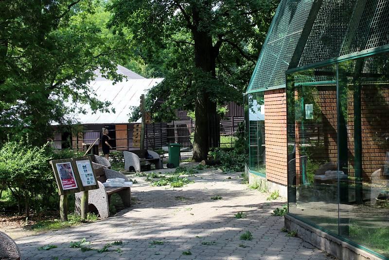 Hodonínská zoo po čtvrteční bouřce s tornádem.