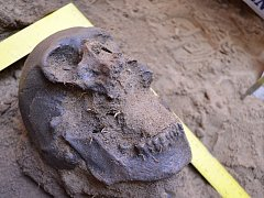 Hodonínští archeologové bádají u hodonínského zámečku. Díky sondám objevili tři kostry.
