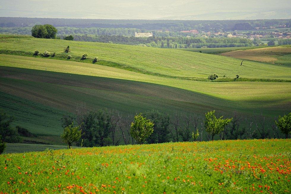 Krásy moravské přírody zachycené objektivem naší čtenářky.