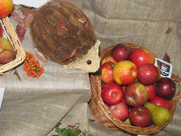 Podzim v Louce