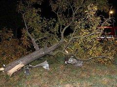 Mladý a opilý řidič způsobil v sobotu 20. října dopravní nehodu u Svatobořic-Mistřína, při které z havarovaného auta vyletěl motor a vůz přerazil strom. Řidič a jeho spolujezdec jsou vážně zranění.