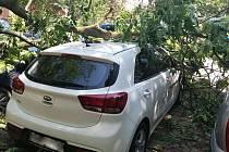 Spadlý strom v Hodoníně poničil tři zaparkovaná auta.