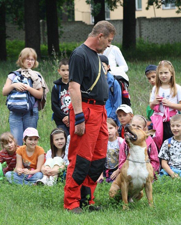 Dny bez úrazu v Hodoníně. Ukázka psího výcviku.