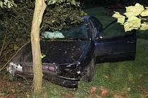 Víc než jedno promile alkoholu nadýchal teprve dvacetiletý mladík, který se v neděli nad ránem vyboural na silnici mezi Velkou nad Veličkou a Loukou. Z místa nehody utekl a schoval se doma. Tvrdí, že při nehodě nebyl pod vlivem alkoholu.