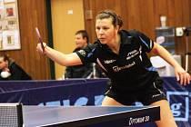 Zkušená hráčka Hodonína Alena Vachovcová má možná za sebou poslední finále. Na krk si bývalá reprezentantka pověsila stříbrnou medaili.