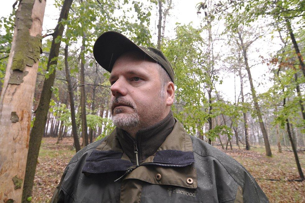 Miliony chroustů se právě rojí v lesích Moravské sahary na Hodonínsku. Spásají listy stromů a kladou do půdy vajíčka. Larvy ohrožují na osm tisíc hektarů lesa. Postřik však zatrhli ochránci přírody. Lesníci označili stav za kalamitní. Na snímku Tomáš Crho