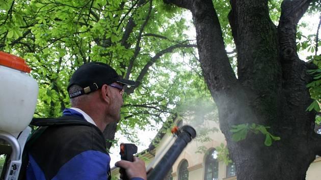 Proti škůdci použili pracovníci technických služeb speciální postřik