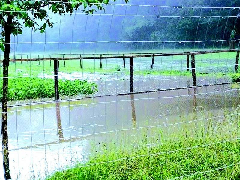 Přívalové deště potrápily Hodonínsko na několika místech.