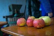 Ve strážnickém skanzenu se uskutečnil jeden z pravidelných pořadů - Podzim na dědině. Letos do něj zasáhl déšť.