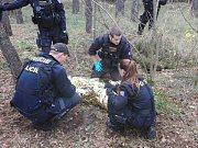 Desítky policistů hledaly pohřešovaného muže ve vracovském lese na Hodonínsku. S pátráním pomáhal i vrtulník. Našli ho na druhý den podchlazeného a zmateného.
