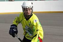 Šestnáctiletý Matěj Fraňo se nečekaně rychle zabydlel v základní sestavě extraligových Sudoměřic, kterým pomohl k postupu do play off.