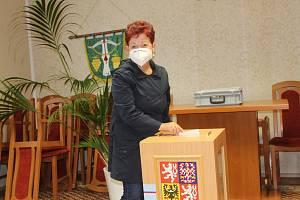 Začátek sněmovních voleb 2021 v Lovčicích, v obci s nejvyšší volební účastí při posledním parlamentním hlasování v roce 2017.