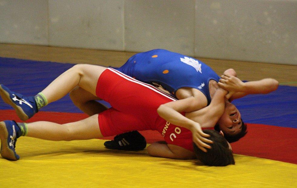 Letošní Velké ceny Hodonína se ve sportovní hale TEZA zúčastnilo 237 mladých zápasníků z osmi evropských zemí.