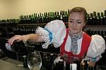 Sedmnáctý ročník výstavy vín v Kostelci.
