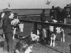 Tak to vypadalo na tarmaku v Hodoníně ve 30. letech minulého století.